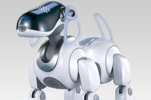 Собака робот Чип (Chip) WowWee — купить в Москве и Санкт-Петербурге по низкой цене