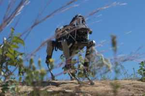 Топ-10 крутых роботов-животных